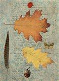Leaf Study III