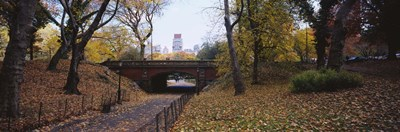Bridge in a park, Central Park, Manhattan, New York City, New York State, USA Poster by Panoramic Images for $86.25 CAD