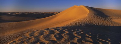 Sand dunes in a desert, Douz, Tunisia Poster by Panoramic Images for $86.25 CAD