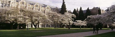 University of Washington, Seattle, King County, Washington State Poster by Panoramic Images for $86.25 CAD