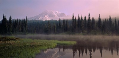 Mount Rainier National Park, Washington Poster by Panoramic Images for $73.75 CAD