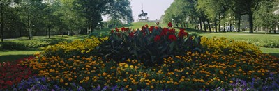 Flowers in a park, Grant Park, Chicago, Cook County, Illinois, USA Poster by Panoramic Images for $86.25 CAD