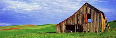Dilapidated barn in a farm, Palouse, Whitman County, Washington State, USA Poster by Panoramic Images for $86.25 CAD