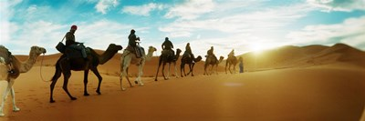 Tourists riding camels through the Sahara Desert landscape led by a Berber man, Morocco Poster by Panoramic Images for $86.25 CAD