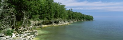 Trees at the lakeside, Cave Point County Park, Lake Michigan, Wisconsin Poster by Panoramic Images for $71.25 CAD