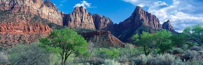 Cottonwood trees and The Watchman, Zion National Park, Utah, USA Poster by Panoramic Images for $71.25 CAD