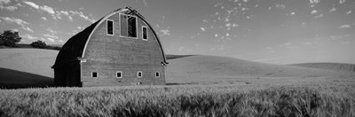 Black and White view of Old barn in a wheat field, Washington State Poster by Panoramic Images for $71.25 CAD