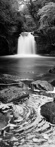 Waterfall In A Forest, Thomason Foss, Goathland, North Yorkshire, England, United Kingdom (black and white) Poster by Panoramic Images for $71.25 CAD