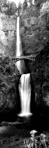 Waterfall in a forest, Multnomah Falls, Columbia River Gorge, Oregon Poster by Panoramic Images for $80.00 CAD