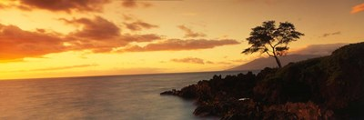 Wailea Point, Maui, Hawaii Poster by Panoramic Images for $90.00 CAD