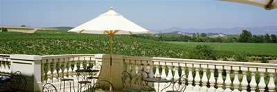 Vineyards Terrace at Winery Napa Valley CA USA Poster by Panoramic Images for $71.25 CAD