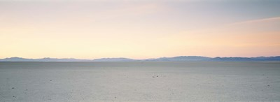 Desert at sunrise, Black Rock Desert, Gerlach, Nevada, USA Poster by Panoramic Images for $86.25 CAD