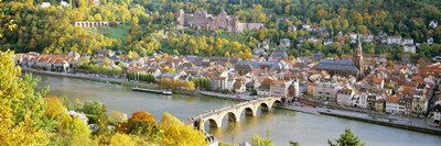 Aerial view of Heidelberg Castle and city, Heidelberg, Baden-Wurttemberg, Germany Poster by Panoramic Images for $71.25 CAD