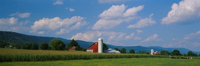 Cultivated field in front of a barn, Kishacoquillas Valley, Pennsylvania, USA Poster by Panoramic Images for $86.25 CAD