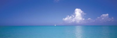 Turks And Caicos, Caribbean Islands Poster by Panoramic Images for $90.00 CAD