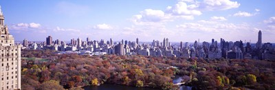Aerial View of Central Park Poster by Panoramic Images for $67.50 CAD