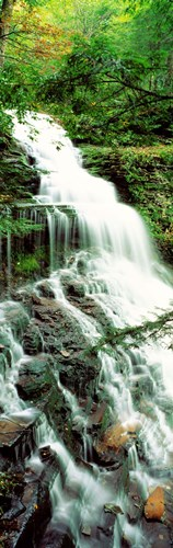 Ganoga Falls Ricketts Glenn State Park PA Poster by Panoramic Images for $71.25 CAD