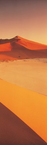 Desert Namibia (vertical) Poster by Panoramic Images for $71.25 CAD