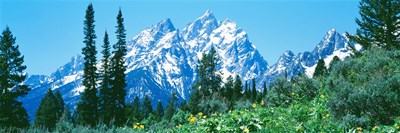 Snow covered peaks, Grand Teton National Park WY Poster by Panoramic Images for $86.25 CAD