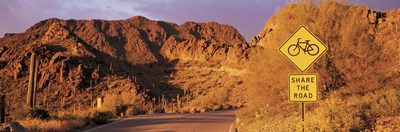 Gates Pass Road Tucson Mountain Park Arizona USA Poster by Panoramic Images for $86.25 CAD