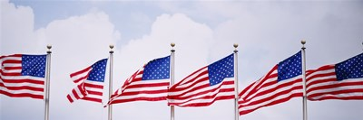 Low angle view of American flags fluttering in wind Poster by Panoramic Images for $71.25 CAD