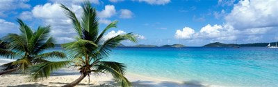 Salomon Beach, US Virgin Islands Poster by Panoramic Images for $91.25 CAD