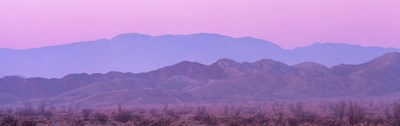 Desert At Sunrise, Anza Borrego California, USA Poster by Panoramic Images for $71.25 CAD