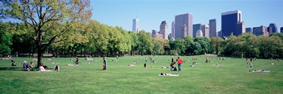Group Of People In A Park, Sheep Meadow, Central Park, NYC, New York City, New York State, USA Poster by Panoramic Images for $71.25 CAD