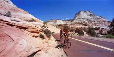 Two people cycling on the road, Zion National Park, Utah, USA Poster by Panoramic Images for $71.25 CAD