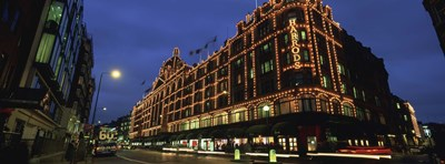 Low angle view of buildings lit up at night, Harrods, London, England Poster by Panoramic Images for $86.25 CAD