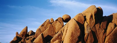Close-up of rocks, Mojave Desert, Joshua Tree National Monument, California, USA Poster by Panoramic Images for $71.25 CAD