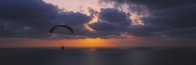 Silhouette of a person paragliding over the sea, Blacks Beach, San Diego, California, USA Poster by Panoramic Images for $86.25 CAD