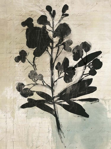 Inky Floral III Poster by Asia Jensen for $67.50 CAD