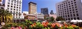 Buildings in a city, Union Square, San Francisco, California, USA