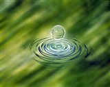 Clear bubble rising from ripples in mottled green water