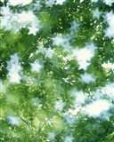 Kaleidoscopic scene with white stars with green and blue