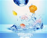 Multicolored seashells and water bubbles in churning water