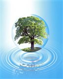A clear sphere with a full tree floats over a large water ring with reflection