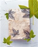 Green and grey leaves superimposed on pink plaster rectangle on white plaster wall
