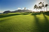 Golf Course, Kauai Lagoons, Kauai, Hawaii
