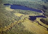 Aerial view of a lake, Algonquin Provincial Park, Ontario, Canada - your walls, your style!
