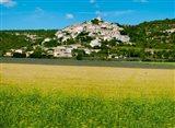 Farm with a town in the background, Simiane-La-Rotonde, Alpes-de-Haute-Provence, Provence-Alpes-Cote d'Azur, France