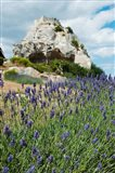 Lavender field in front of ruins of fortress on a rock, Les Baux-de-Provence, Provence-Alpes-Cote d'Azur, France