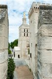 Church in a city, Cathedrale Notre-Dame des Doms d'Avignon, Palais des Papes, Provence-Alpes-Cote d'Azur, France