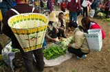 People buying vegetables at a traditional town market, Xizhou, Erhai Hu Lake Area, Yunnan Province, China