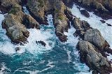 Aerial view of a coast, Point Lobos State Reserve, Monterey County, California, USA