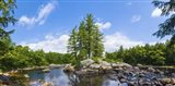 Trees and rocks, Moose River, New York State