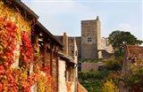 Castle on a hill, Brancion, Maconnais, Saone-et-Loire, Burgundy, France
