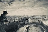 City viewed from the Notre Dame Cathedral, Paris, Ile-de-France, France