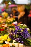 Bunch of flowers at a flower shop, Rue De Buci, Paris, Ile-de-France, France
